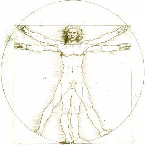 Vitruvian Man Clean